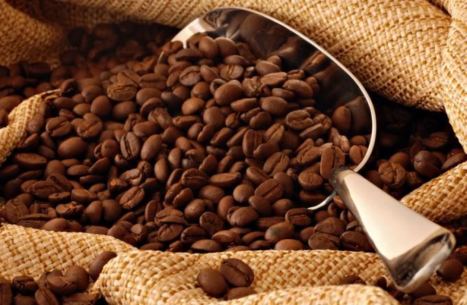 tcafe